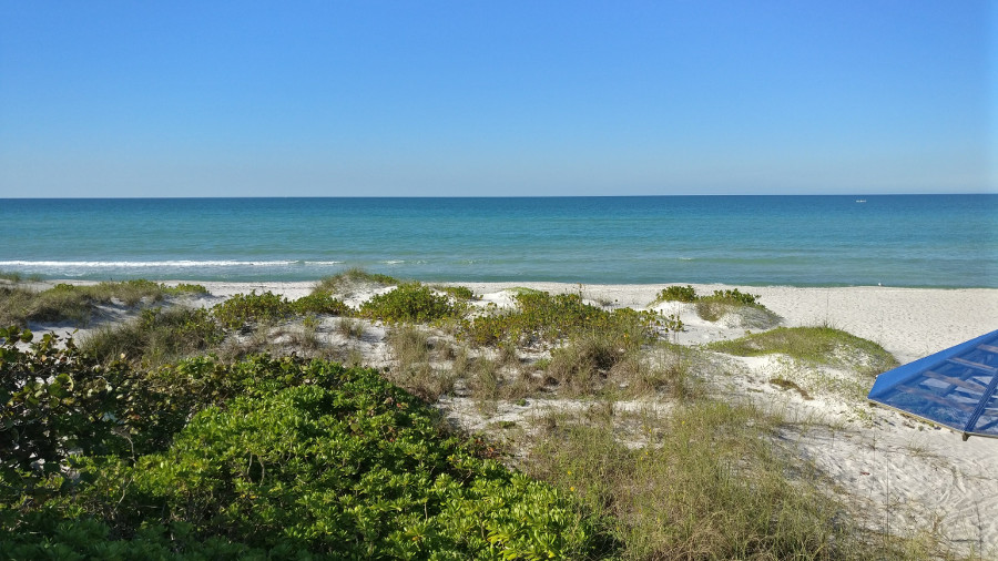 longboat key milf women Complete information on the harborside red course at longboat key club-harborside courses in longboat key, florida including maps, awards, ratings, and more.